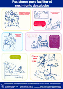 Poster posiciones 1 naissance espanol lowres
